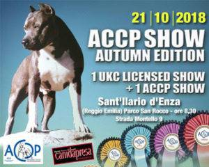 ACCP Show Autumn Edition