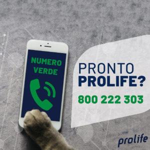 Numero Verde Prolife