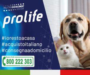 #iorestoacasa, #acquistoitaliano e supporto i piccoli negozi specializzati