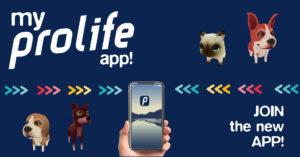 MyProlife APP, il nuovo strumento per una vita a sei zampe